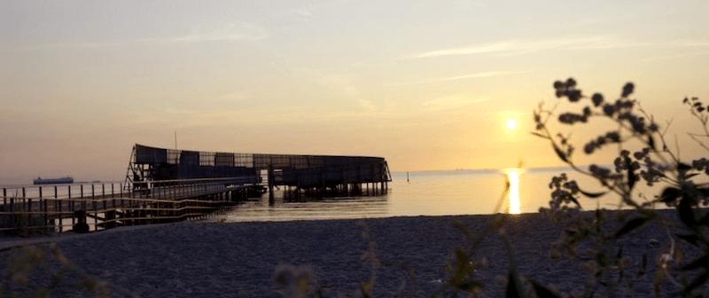 Ver Dinamarca y descubrir de Amager Stranpark