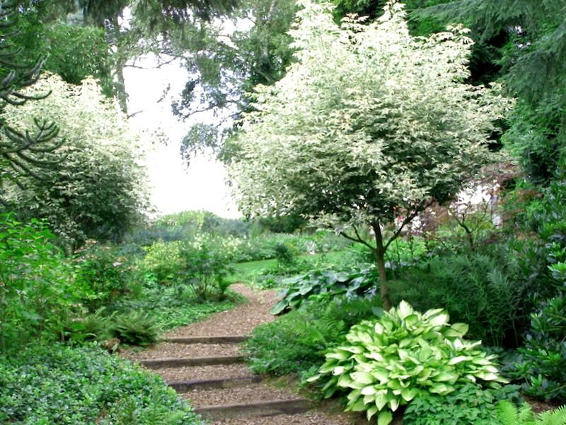 Ver Inglaterra y descubrir de Beth Chatto Gardens