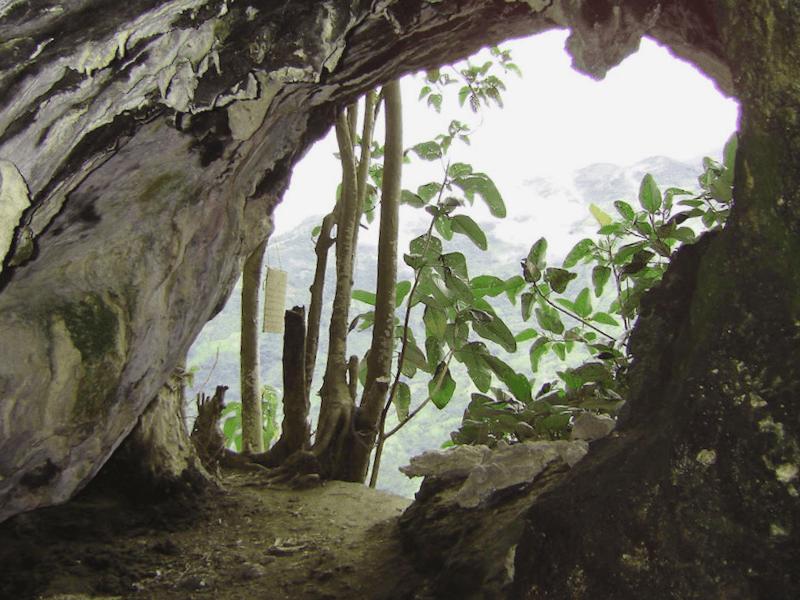Visitar Cueva de la Catedral