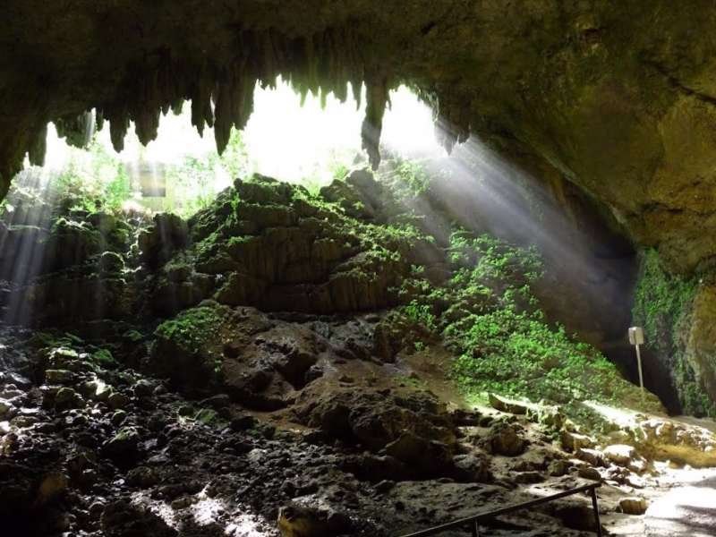 Visitar Puerto rico y maravillarse de Cuevas del rAo Camuy