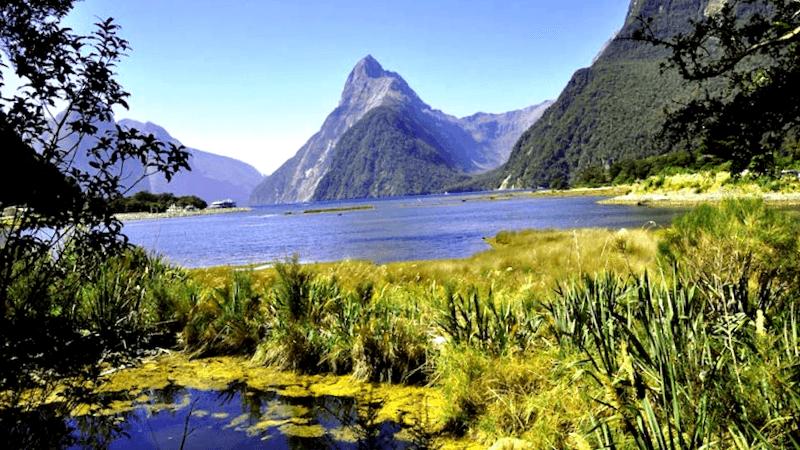Fiordland National Park que descubrir