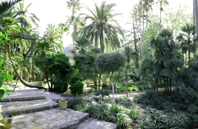 Visitar España y maravillarse de Jardines de Alfabia