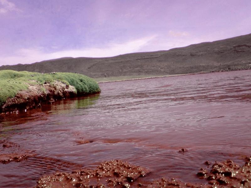 Conocer Laguna Roja