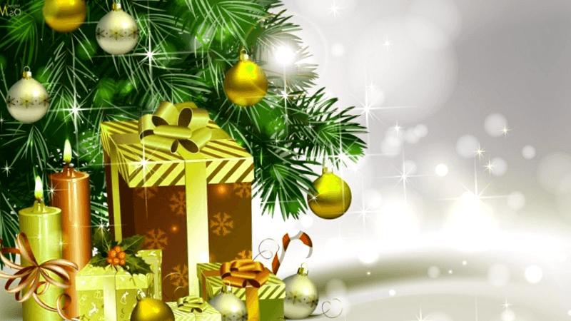 Conocer Natal