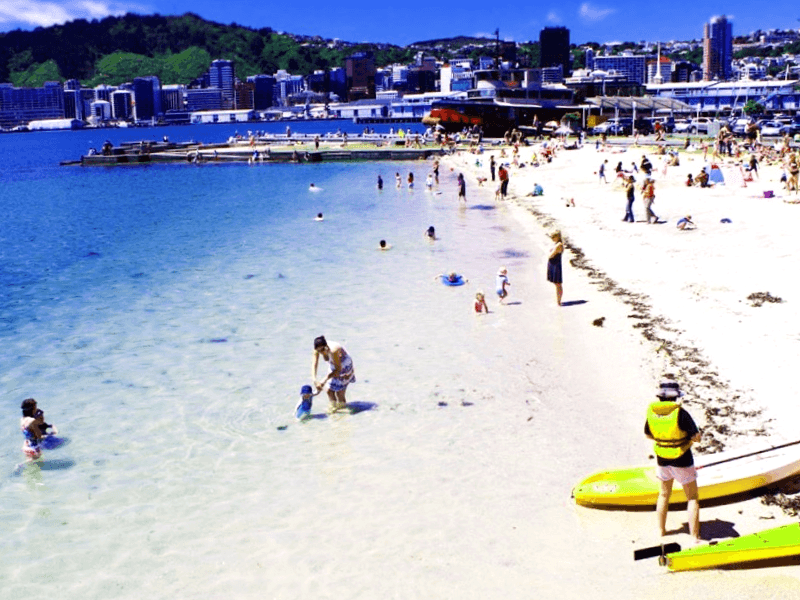 Oriental Bay Beach que debemos ver