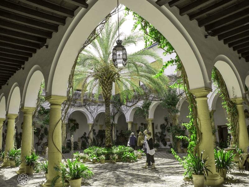 Visitar España y descubrir de Palacio de Viana