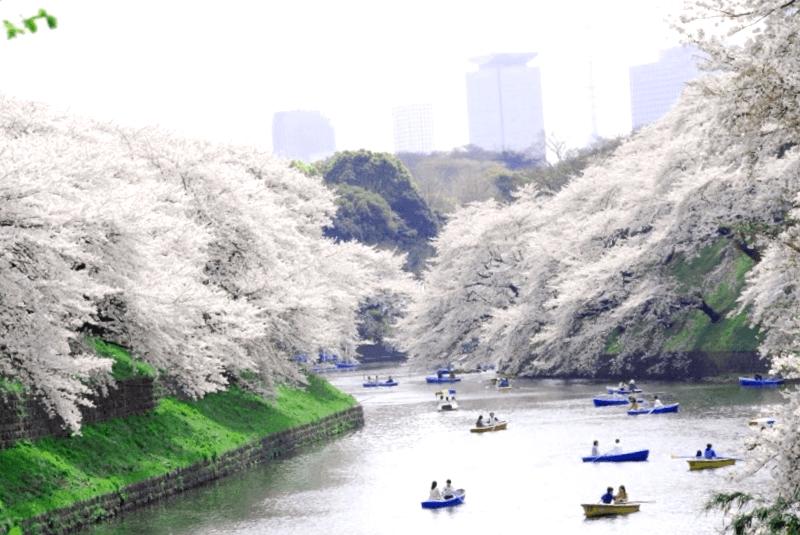 Parque Ueno que debemos ver