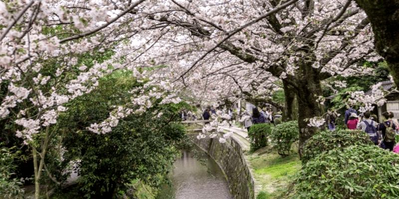 Conocer Japon y maravillarse de Paseo del Filosofo