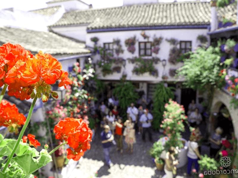 Conocer España y descubrir de Patio de San Basilio