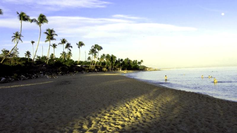 Que descubrir en Playa La Laguna