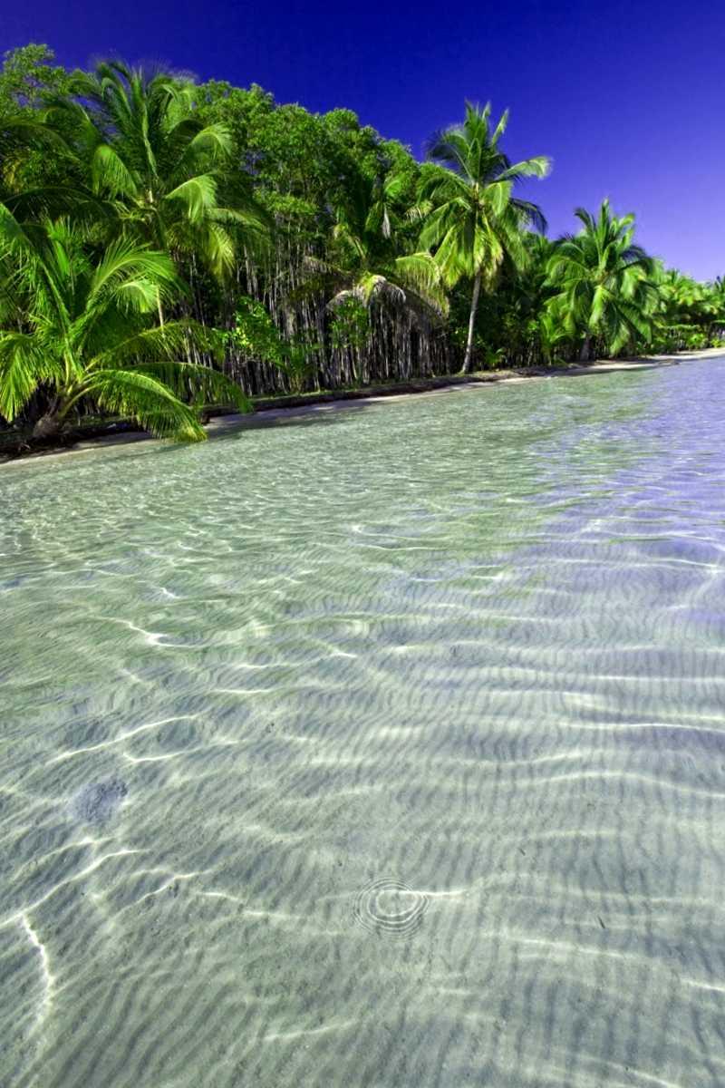 Que visitar en Playa de las estrellas