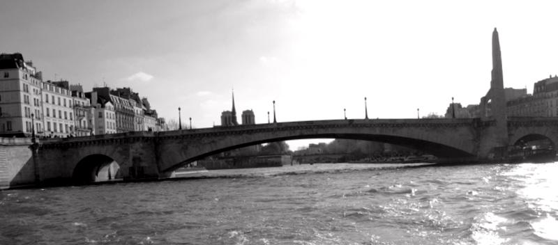 Ver Francia y maravillarse de Puente de la Tournelle