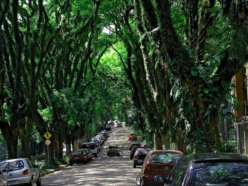 Ver Brasil y maravillarse de Rua Goncalo de Carvalho