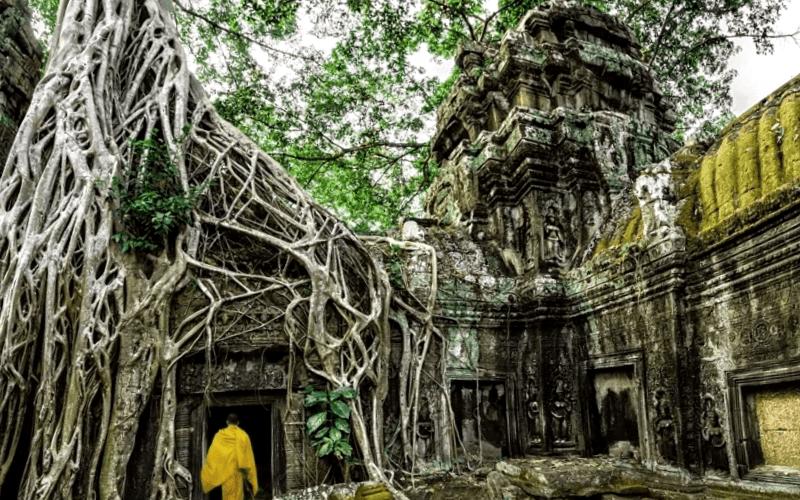 Que ver en Templo de Ta Phrom