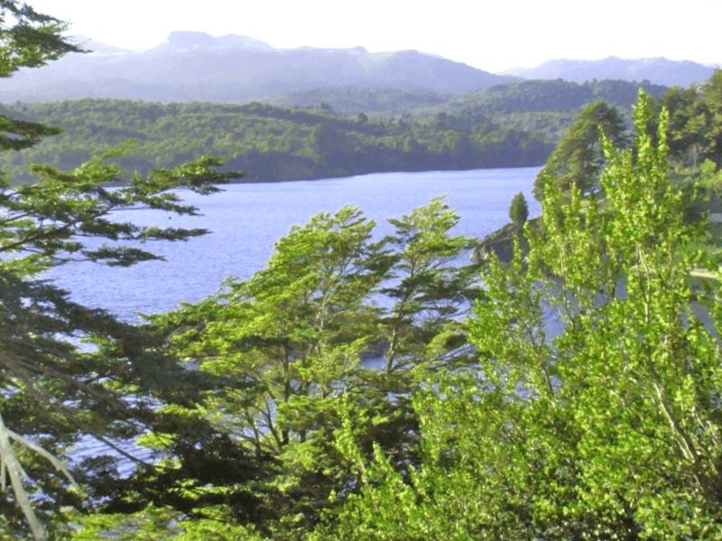 Vista parcial del lago Alumine que debemos ver