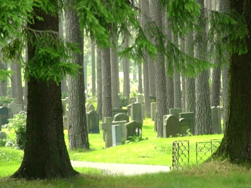 Conocer Suecia y descubrir de Cementerio Skogskyrkgarden