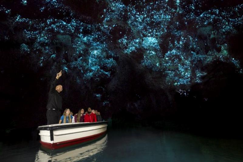 Que descubrir en Cuevas de Waitomo