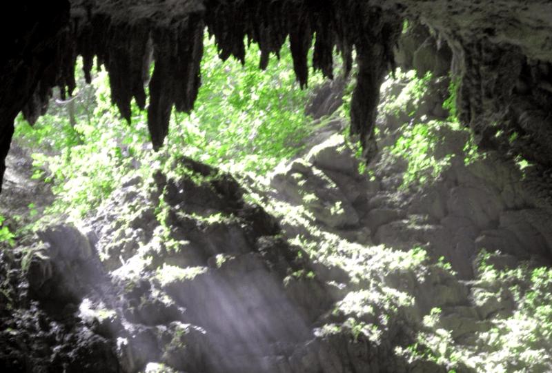 Cuevas del rAo Camuy que debemos ver