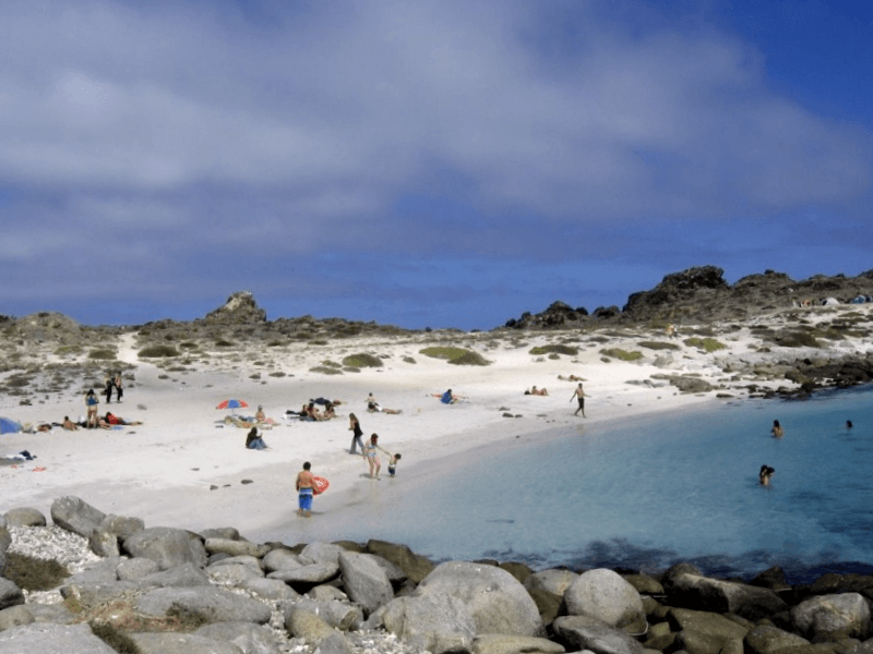 Visitar Chile y descubrir de Isla Damas