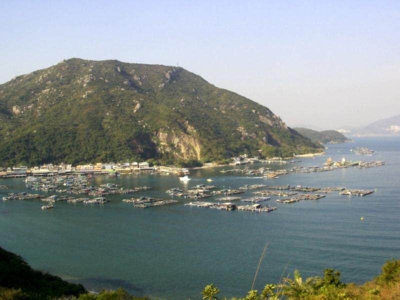 Ver China y maravillarse de Isla Lamma