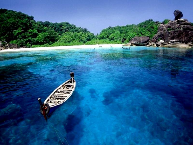 Ver Japon y maravillarse de Isla Panari