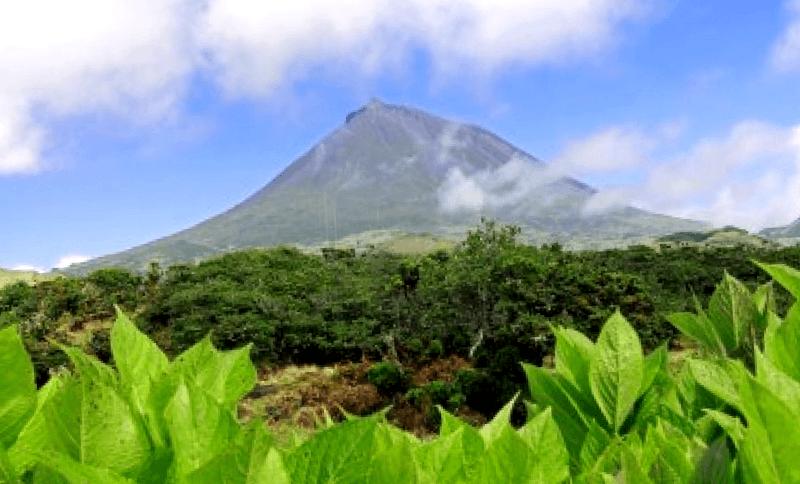 Que ver en Isla de Pico