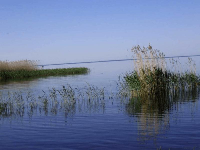 Lago Peipus que ver
