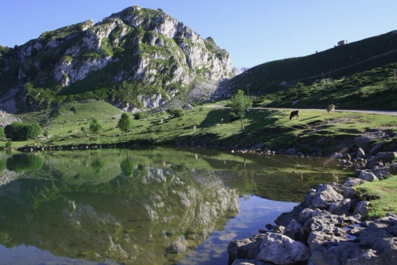 Que visitar en Lagos de Covadonga