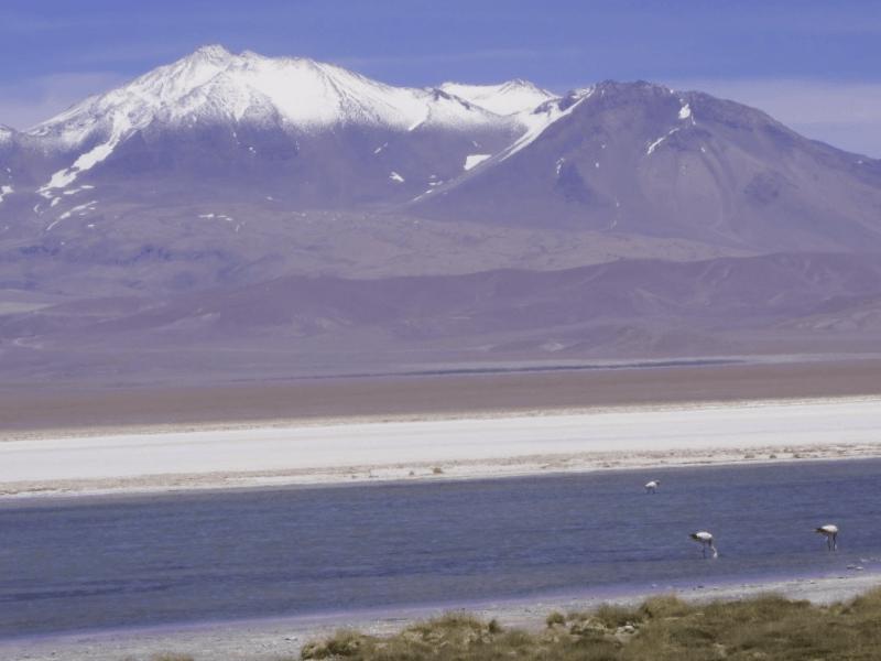 Conocer Chile y descubrir de Laguna Santa Rosa