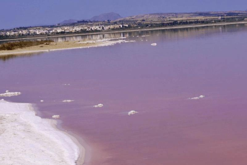 Laguna de Torrevieja que visitar