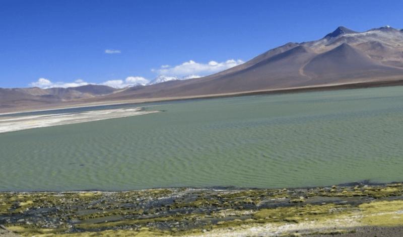 Conocer Chile y maravillarse de Laguna del Negro Francisco