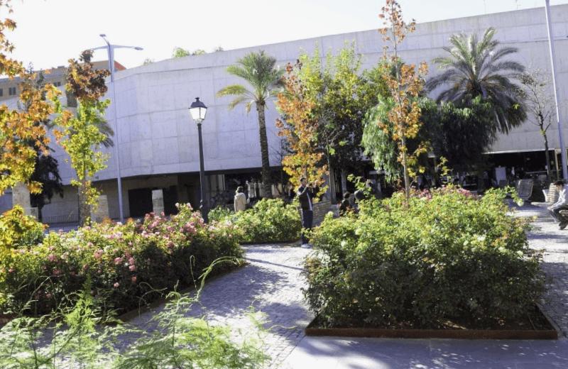 Museo Valenciano de la Ilustracion y la Moder que descubrir