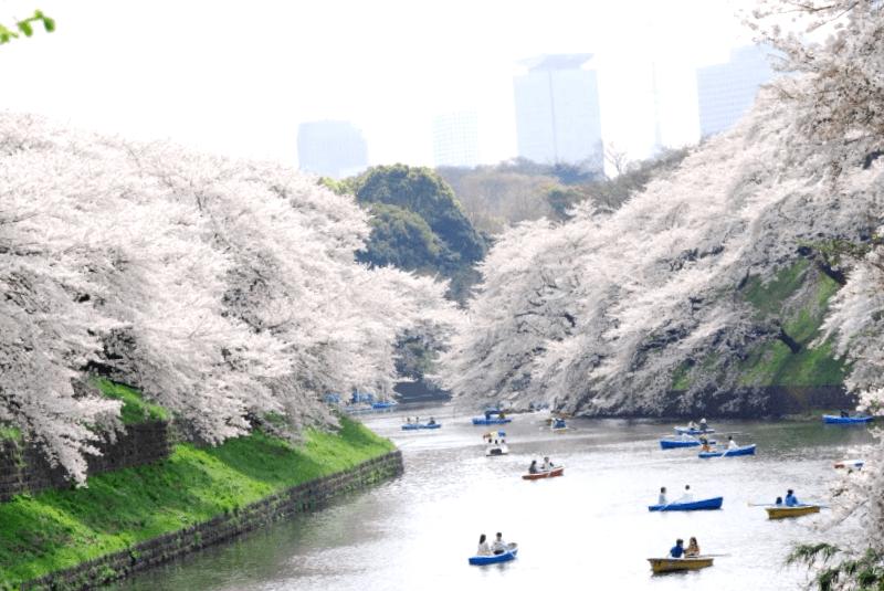 Que visitar en Parque Ueno