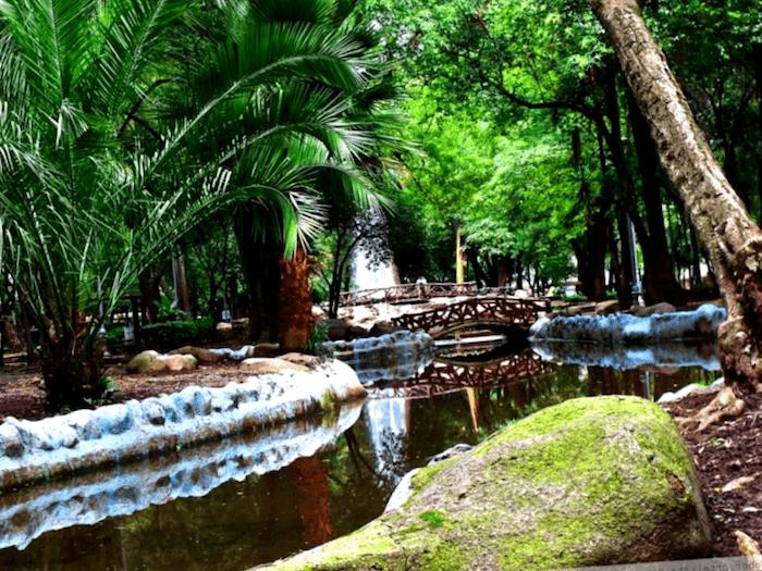 Que descubrir en Parque en Colonia Condesa