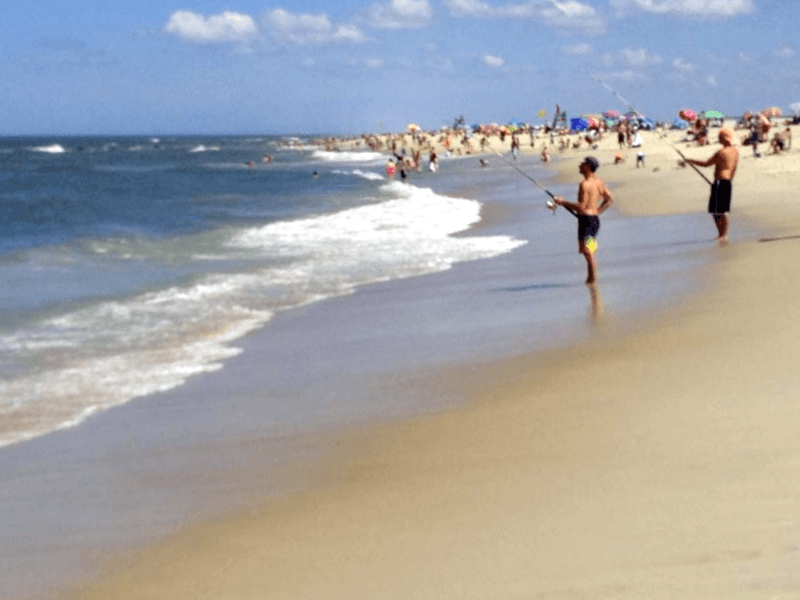 Que visitar en Playa de Assateague