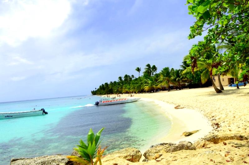 Conocer Playa de Isla Saona