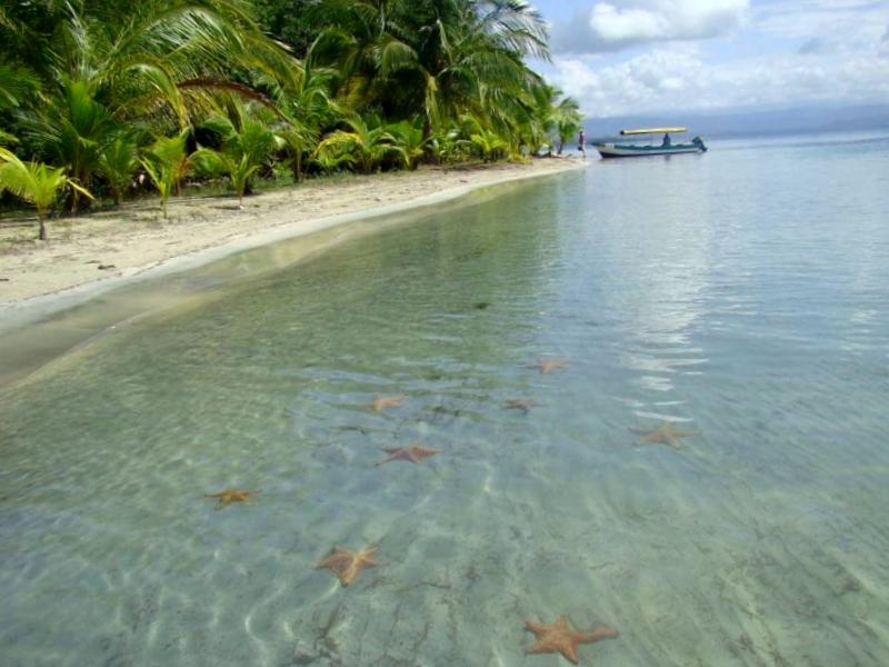 Conocer Panama y maravillarse de Playa de las estrellas