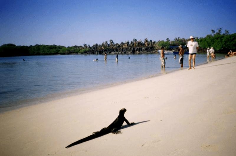 Ver Ecuador y descubrir de Playa mansa