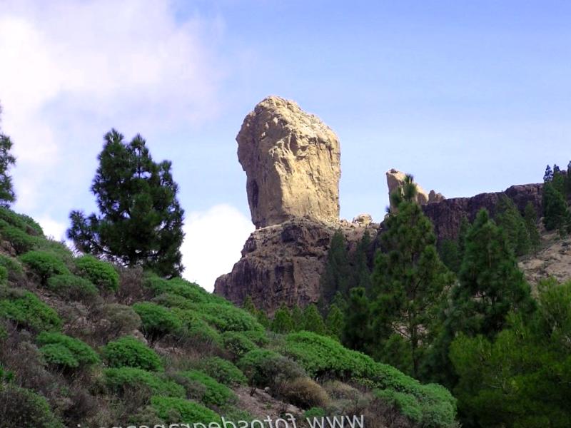Que descubrir en Roque Nublo