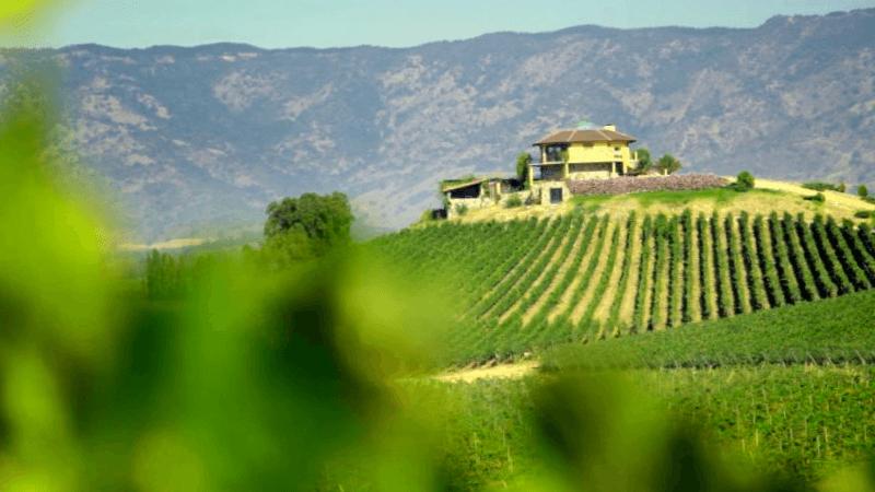 Ruta del Vino que debemos ver